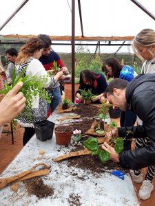 Visitas Guiadas en el Jardín Botánico